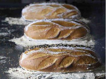 Imagen para la categoría Panaderia